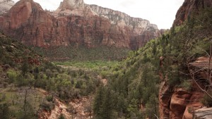 024 Zion NP