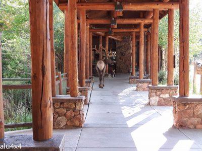 035 Visitor Center