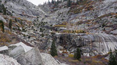 058-sequoia