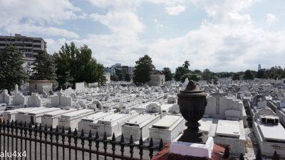 029 Friedhof